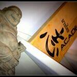 Happy-Buddha-Chi-Academy-Den-Bosch-Geluk-Gezondheid