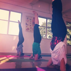 yoga-den-bosch-chi-academy