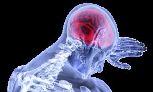 trainen van je zenuwstelsel, ademhaling, herstel, rust