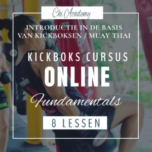 online cursus kickboksen, online cursus muay thai, basis kickboksen, muay thai basics, kickboksen fundamentals, muay thai fundamenten