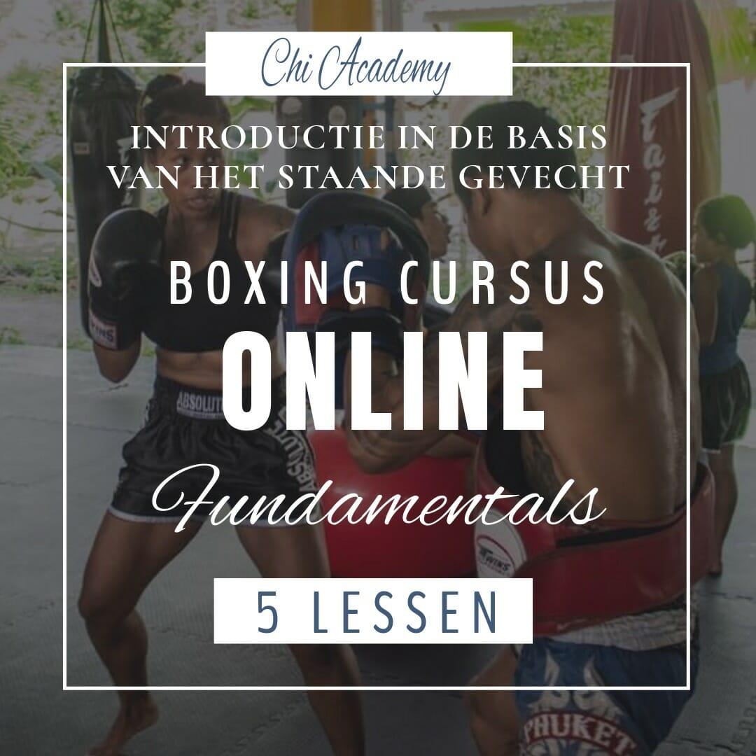online cursus boksen, online kickboksen, online cursus muay thai, basis kickboksen, muay thai basics, kickboksen fundamentals, muay thai fundamenten