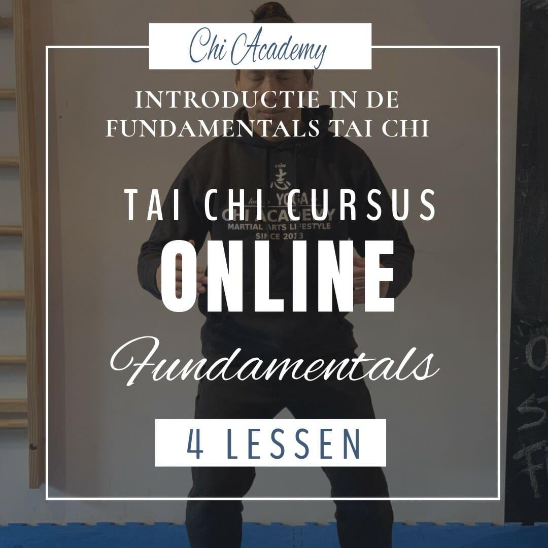 online cursus tai chi, online cursus thai chi, online taiji, basis tai chi, thai chi basics, tai chi fundamentals, thai chi fundamenten